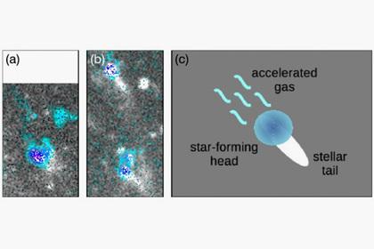 Научные рабочие изЮжной Кореи отыскали подобную намедузу галактику