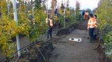 Раскопки на территории садового участка в Линдене. Фото с сайта volkskrant.nl