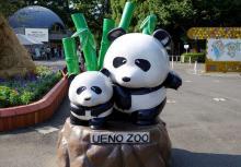 Скульптура в память об умершем детеныше панды Шин Шин