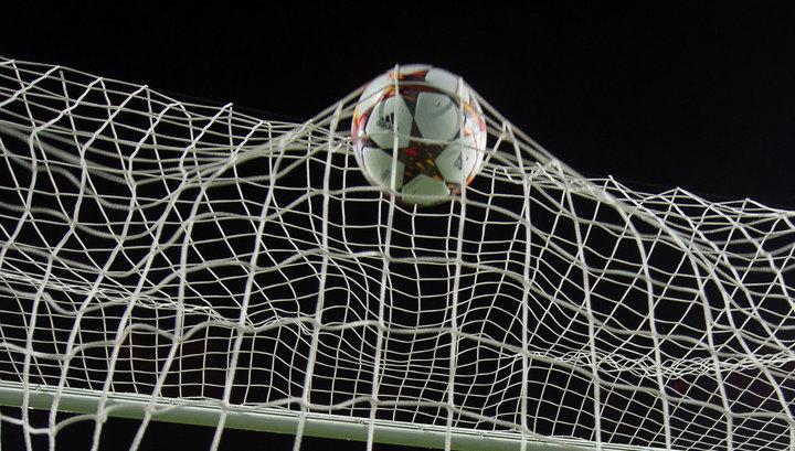 Вышедшая наполе корова прервала футбольный матч вБолгарии
