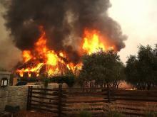 Лесные пожары в Калифорнии. 9 октября 2017 г.  Getty Images. Фото: Дж.Салливан