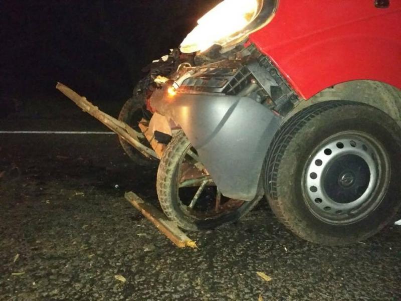 ВОдесской области микроавтобус столкнулся стелегой: три человека погибли
