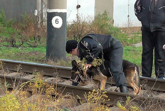 Около  ж/д платформы вОдесской области обнаружили труп женщины
