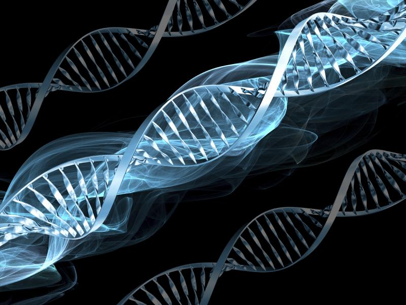 the significance and use of dna in genetic engineering technology Polymerase chain reaction (pcr), a technology used for amplifying building blocks for new dna strands rt-pcr of pcr: cloning, genetic engineering.