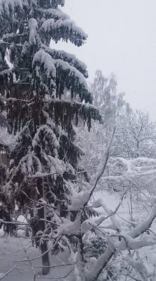 Савранский район, Одесская область. Фото Оксаны Орел в «Фейсбуке»