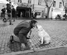 Фото Игоря Ландера