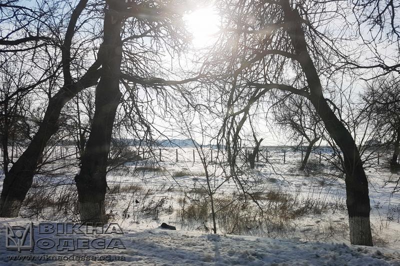 Будет -48°! ВАлтайском крае объявили новое штормовое предупреждение из-за сильных морозов