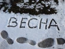Фото с сайта unn.com.ua