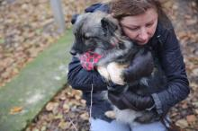 Волонтер Виктория Корпусова с подопечной собакой. Фото Марии Сабуровой