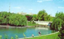 Парк Победы (имени Ленина) в 1981 году. Фото из коллекции проекта viknaodessa.od.ua/old-photo
