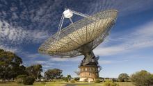 Фото : CSIRO