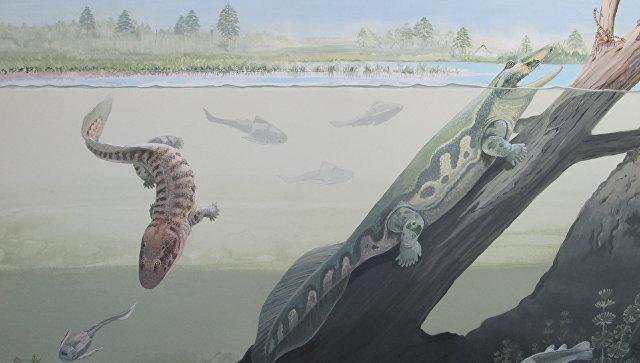 ВКитайской республике найдены древнейшие следы животных, возрастом 550 млн лет