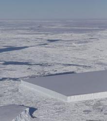 Фото: twitter.com/NASA_ICE