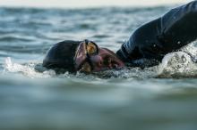 Фото: Olaf Pignataro / Red Bull Content Pool / AP
