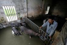 Фото: Nguyen Huy Kham / Reuters