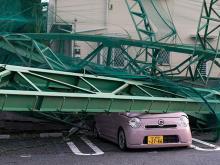 Итихара, Япония. 9 сентября 2019 года. Getty Images. Фото: Т.Охсуми