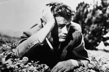 Джеймс Дин. Фото: Hulton Archive / Getty Images
