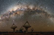 Фото: Alex Cherney / CSIRO