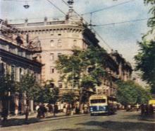 Дерибасовская, высадка лип, 1960-е годы