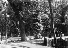 Хаджибейский парк, конец 1950-х годов