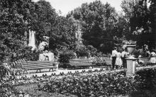 В городском саду, фотограф И. Павленко, почтовая открытка, 1962 г.
