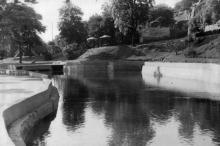 Водный бассейн Дворца пионеров, 1956 г.