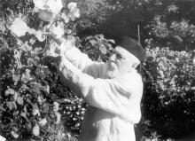 Академик В.П. Филатов в своем саду, Пролетарский бульвар, 53
