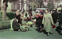 Одесса. Торговля цветами на привокзальной площади. 1957 г.