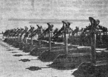 Одесса. Могилы румынских солдат в парке Шевченко. Фото из «Одесской газеты». 5 июня 1943 г.