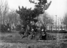 Одесса. В парке им. Г. Котовского в Лузановке. Фотограф А.А. Требунский. 1981 г.