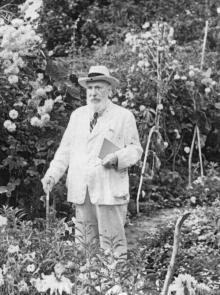 Академик В.П. Филатов в своем саду на Пролетарском бульваре, 53. Фотограф Е.Г. Шаер. 1953 г.