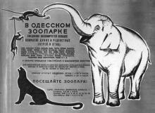 Реклама Одесского зоопарка