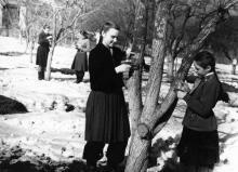 Юннаты за сбором кладок в плодовом саду станции, Одесса. Одесса. Месанжик (184)