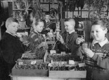 Занятия кружка юных растениеводов в Одес. дворце пионеров. 12.IV.56 г. Одесса, Левит (953)