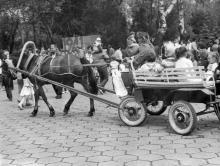 В парке им. Шевченко, катание на лошади. г. Одесса, июнь 1989 г. В. Курицын (11158)