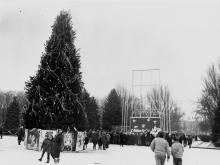 Празднование Нового года на Куликовом поле. г. Одесса 1991 г. О. Владимирский (12231)