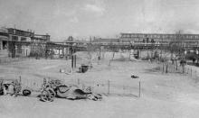 Озеленение территории завода ЗОР. 1952 г.