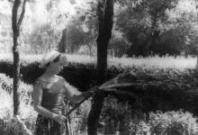 Центральная аллея завода им. Октябрьской революции. г. Одесса, 1965 г. Негребецкий (1990)