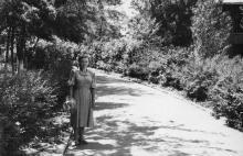Одесса. ВСГИ. Аллея. 28 июня 1954 г.