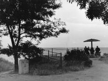 В парке дома отдыха «Ударник». Одесса. 1958 г.