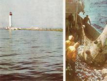Одесский маяк; Удачный лов