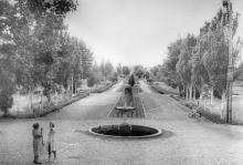 Аллея санатория им. Дзержинского. Одесса. 1939 г.