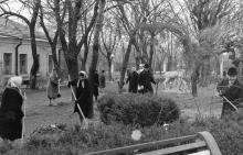 Возле здания администрации на второй территории санатория им. Дзержинского. За забором ул. Пионерская. Одесса, 1960-е годы
