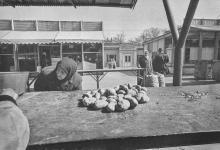 Одесса. На Новом рынке. Фотограф Илья Гершберг. 1960-е годы
