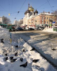 Одесса. Пантелеймоновская улица. Фото Вячеслава Тенякова. 20 января 2016 г.