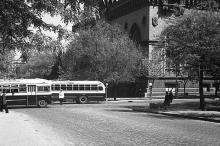 Фотограф А.И. Молчанов, лето 1954 г.