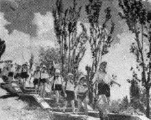 Детский санаторий в Лузановке. Фото в кратком справочнике-путеводителе «Одесса», 1956 г.