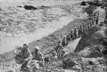 Отдыхающие в «Украинском Артеке» дети на прогулке вдоль берега моря. Фотография в справочнике «Курорты Одессы», 1955 г.