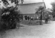 Ботанический сад ( –1917)