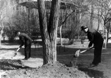 Субботник во дворе библиотеки.  Фото из фотоальбома сотрудника библиотеки Г.А. Каширина. Начало 1960-х гг.